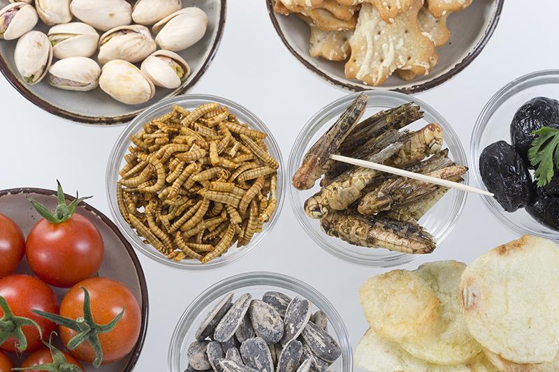Besoin de protéines ? Les restaurants d'insectes rien que pour vous